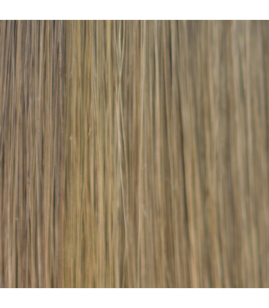 Lenia Hair Bulk Color 82 gram